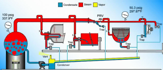 Steam and Condensate