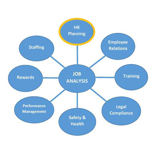 job analysis uses archives technology transfer services job analysis uses hr planning tts