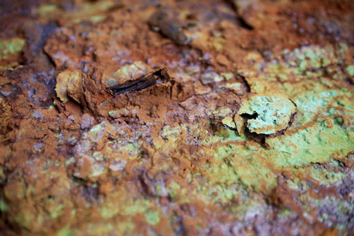 Preservation Rust