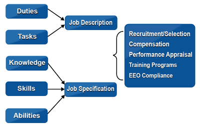job task analysis and recruitment Job analysis involves identifying what skills, abilities or knowledge are required to perform a job or task.